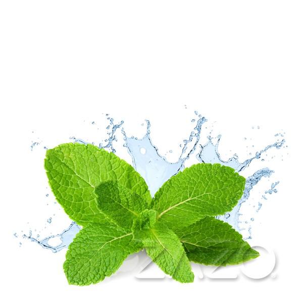 Fresh Mint - Zazo - Liquid - 10ml