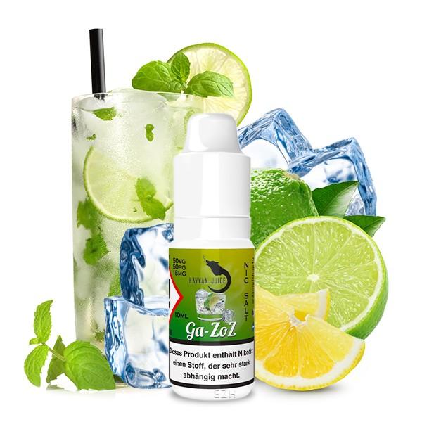 Ga-zoz von Hayvan Juice - Nikotinsalz Liquid - 10ml
