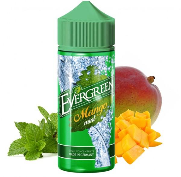 Mango Mint - Evergreen - Aroma 30ml
