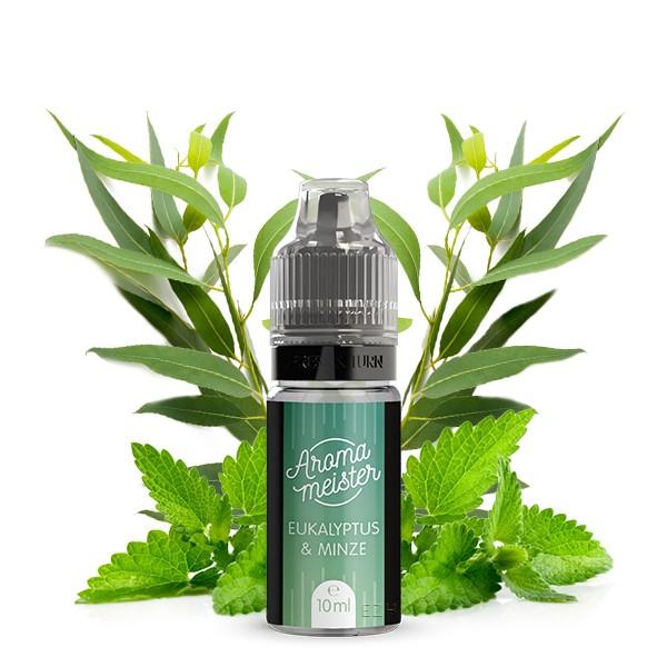 Eukalyptus & Minze Aroma von Aromameister - 10 ml